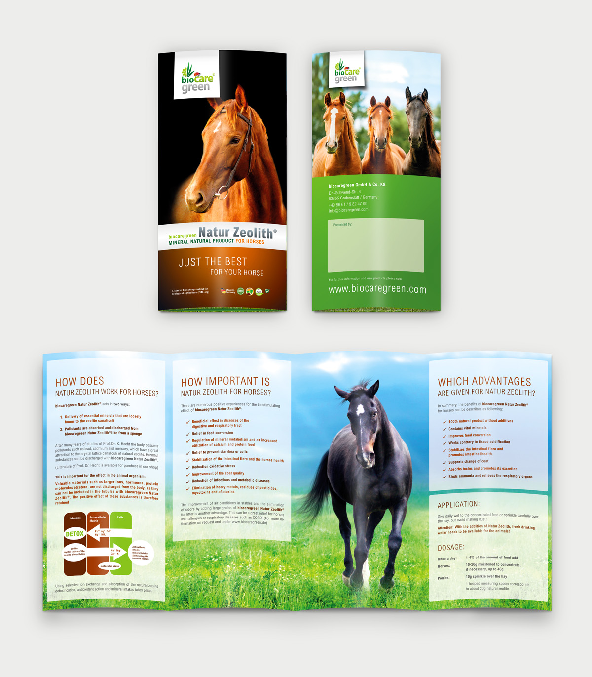 biocaregreen-Folder-Horse-english