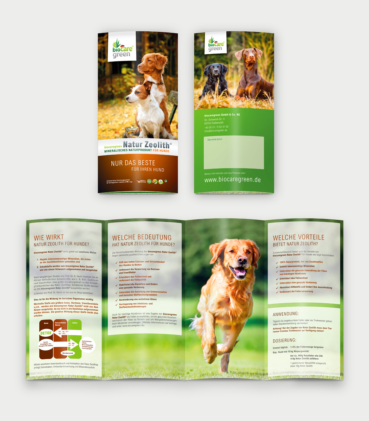 biocaregreen-Folder-Hund
